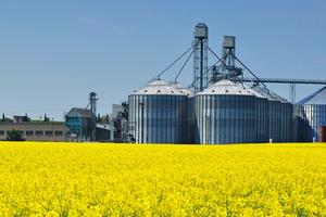 DOUBLE COUNTING EN ESPAÑA (Sostenibilidad de los biocarburantes)