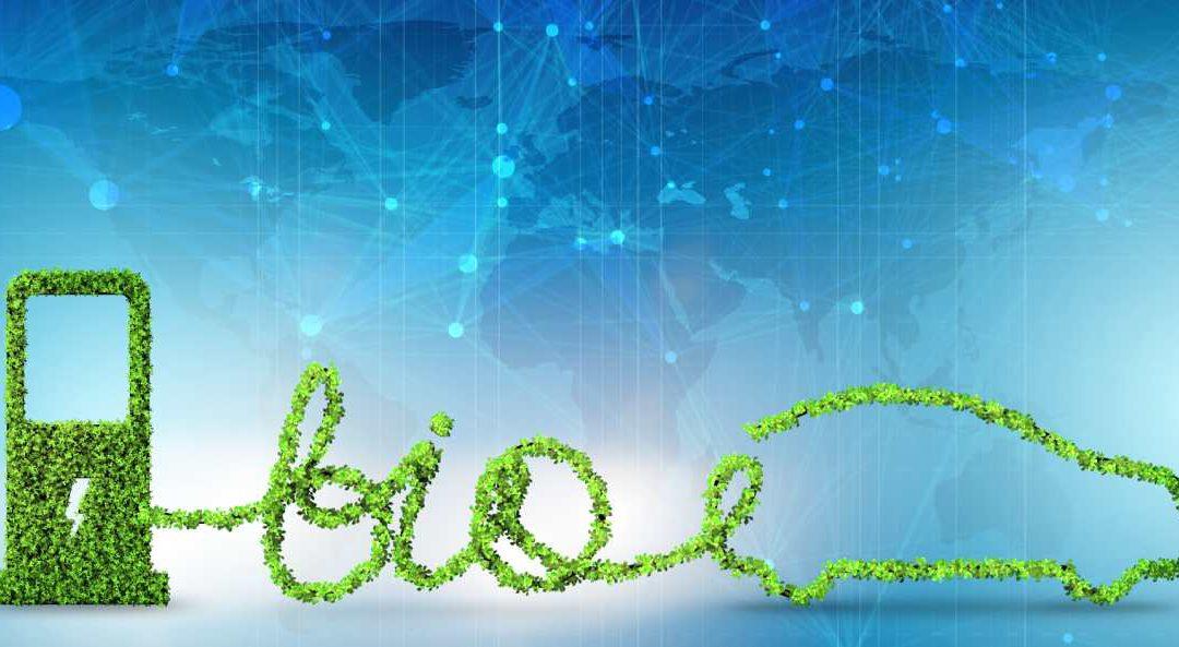 ¿Qué es el biodiésel y con que materias primas se produce?